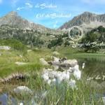Lac Milieu Pic et Refuge ecriture ok