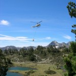 helico lac
